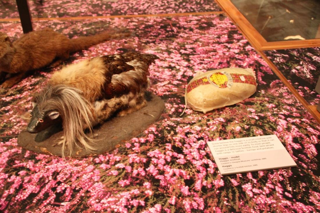 Haggis at the Kelvingrove Art Gallery and Museum by Jez Braithwaite