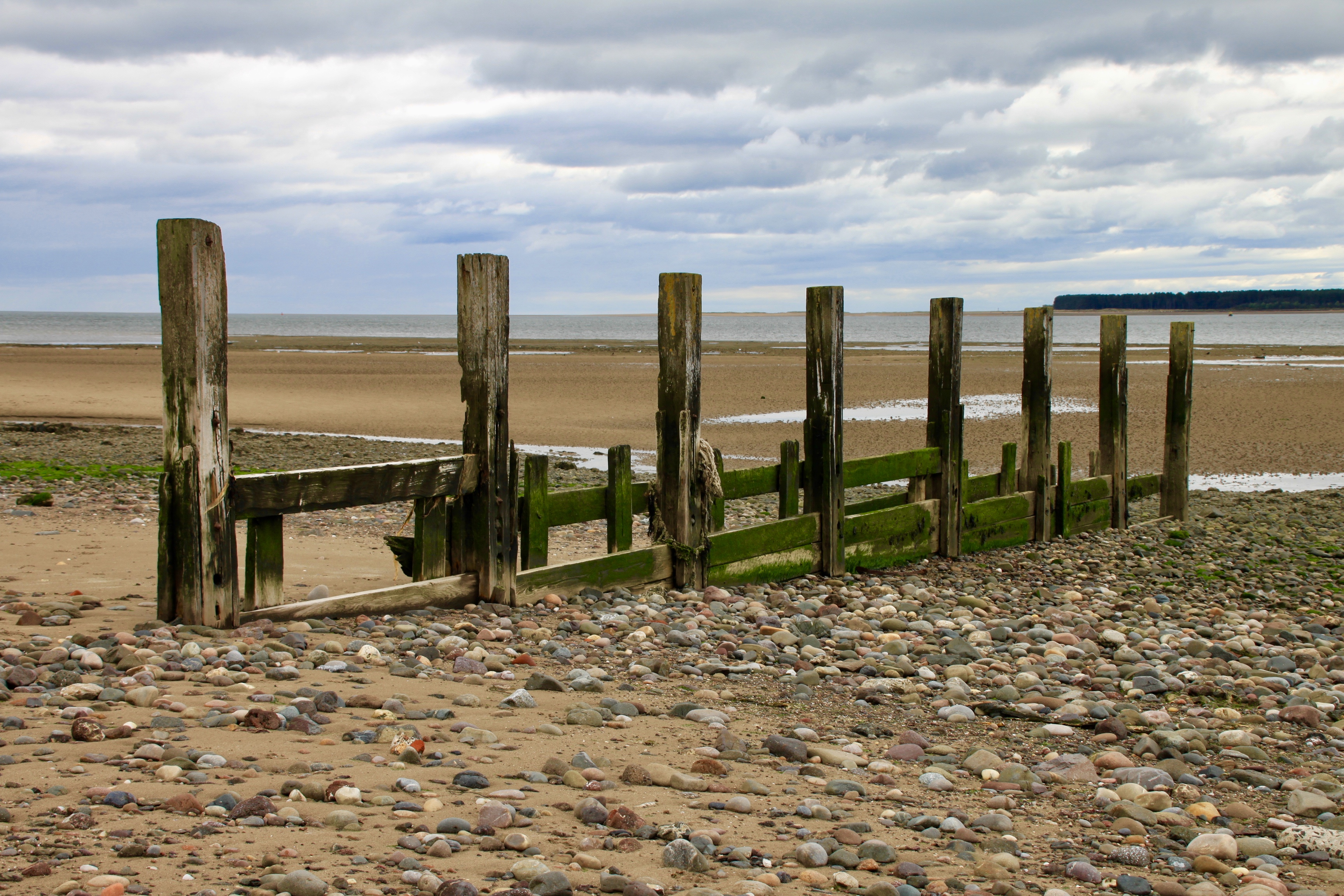 Groyne on Broughty Ferry Beach by Jez Braithwaite