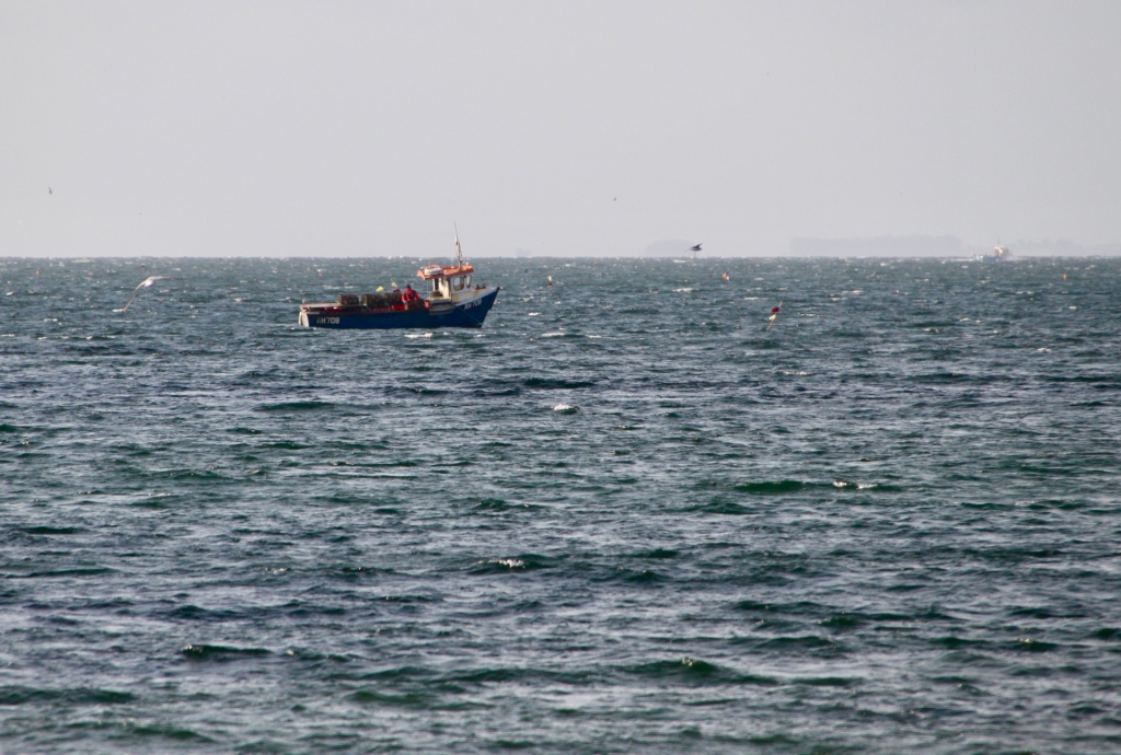 Lobster boat off Arbroath by Jez Braithwaite