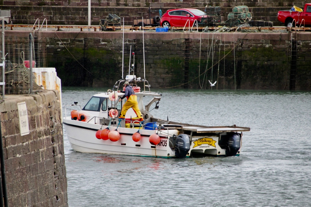 Fishing boat entering Arbroath inner harbour by Jez Braithwaite
