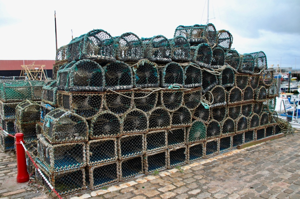 Crab pots and lobster creels at Arbroath Harbour by Jez Braithwaite