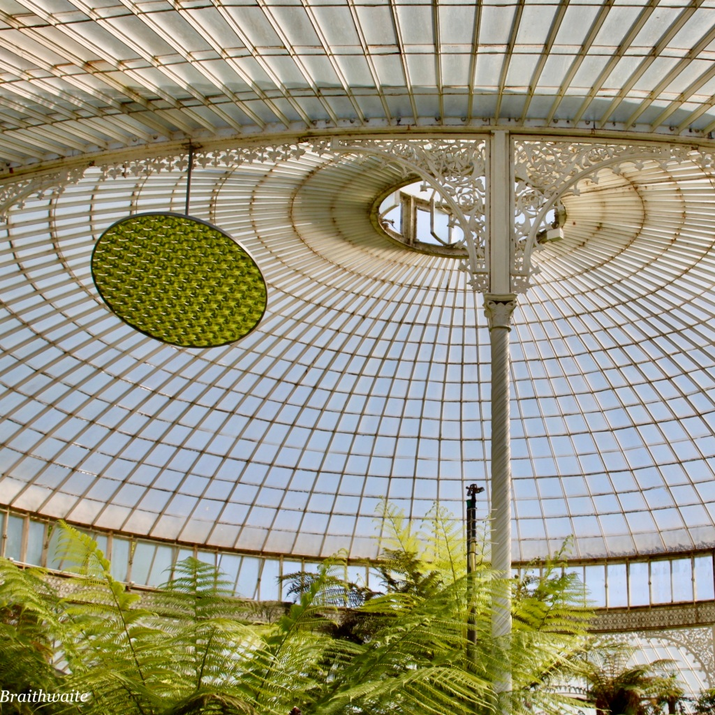 Kibble Palace by Jez Braithwaite