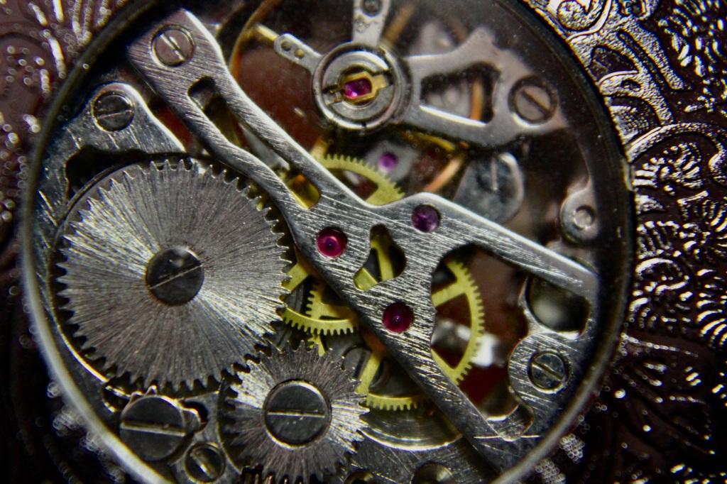 Skeleton pocket watch (back)