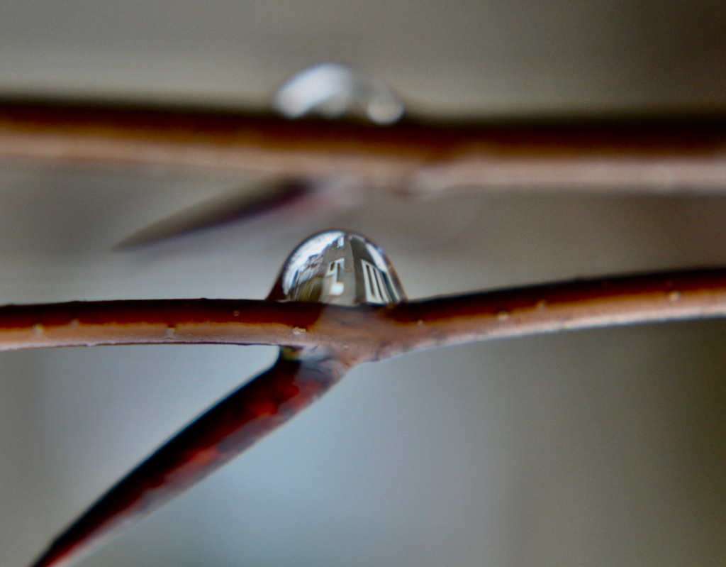 House in a water droplet