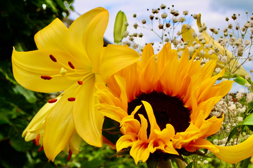 Lily & sunflower