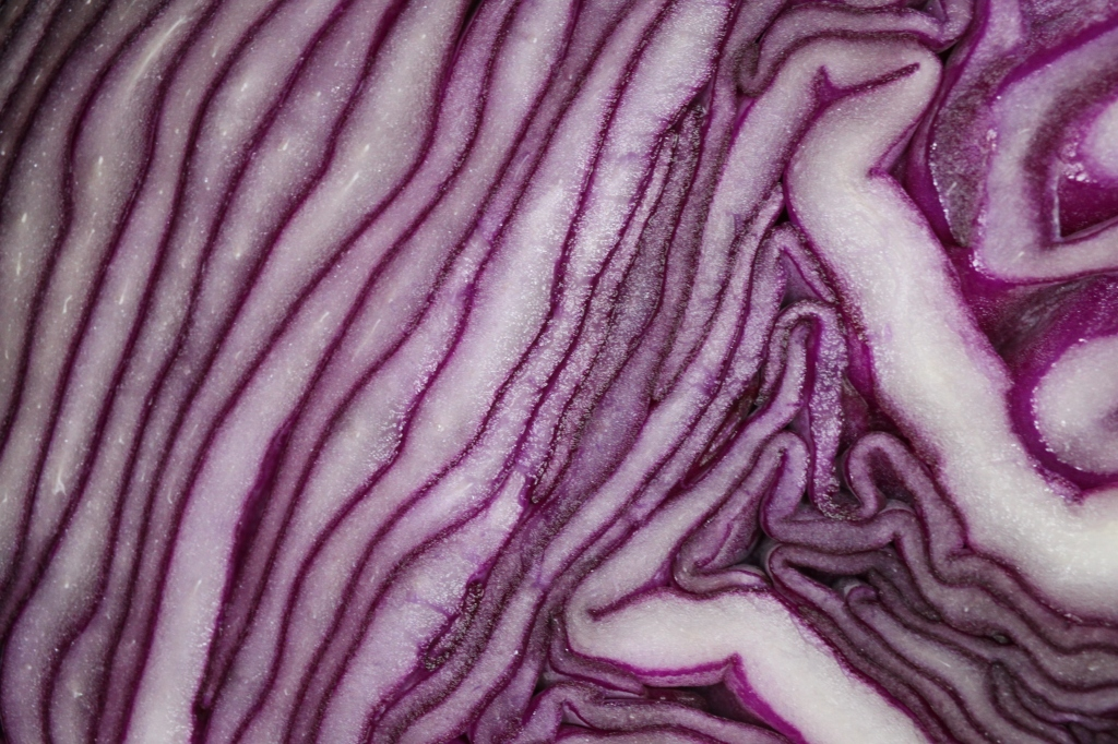 Red cabbage centre
